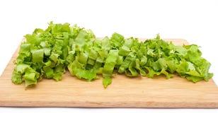 Green lettuce salad slices Stock Image