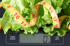 Green lettuce and tape measure on kitchen scale Stock Photo