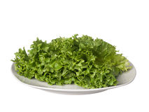 Green lettuce on white plate isolated on white Royalty Free Stock Image