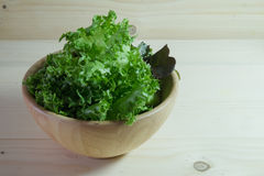 Green lettuce in wood bowl Stock Image