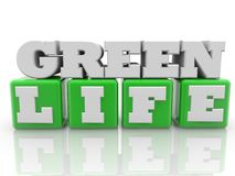 Green life concept on cubes in green color. In background royalty free illustration