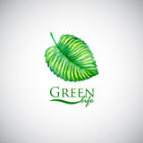 Green life watercolor leaf like logo icon Stock Photography