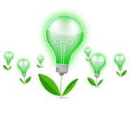 Green light bulb Stock Photography