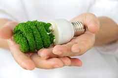 Green light bulb Stock Photos