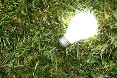 Green Light Bulb Stock Image