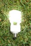 Green Light Bulb Stock Photo