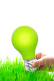 Green light bulb in hand Stock Image