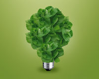 Green light bulb idea. Ecology concept, Green light bulb as a tree Royalty Free Stock Photos