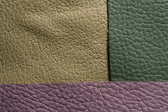 Green lilac leather Stock Image
