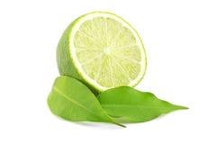 Green lime stock photos