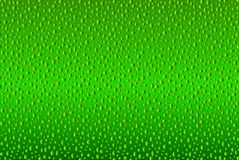 Green lime citrus skin surface texture  illustration Royalty Free Stock Photography