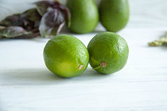 Green lime. Fresh green lime on a table stock photos