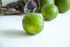 Green lime. Fresh green lime on a table stock photography