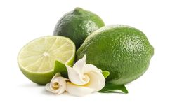 Green lime with half of juicy lime and beautifull flower on white background royalty free stock photography