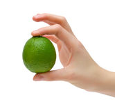 Green lime in hand. Ripe juicy lime in female hand. Isolation Royalty Free Stock Images