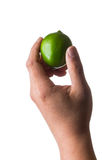 Green lime. In hand isolated on white background royalty free stock image