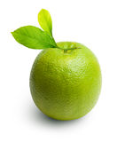 Green lime isolated Royalty Free Stock Image