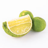 Green lime isolated on white background Stock Image