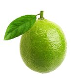 Green lime with leaf Stock Photography