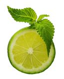 Green lime with mint leaf Stock Photography
