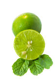 Green lime and mint leaf on white background Stock Images
