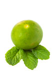 Green lime and mint on white background Royalty Free Stock Photos