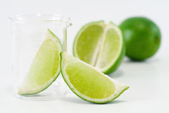 Green lime setup Royalty Free Stock Photo