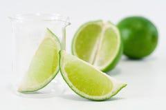 Green lime setup royalty free stock photo