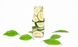 Green lime slices in a bottle. With green leaves isolated Stock Photography