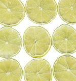 Green lime slices. Fresh green lime lemon slices isolated on white background stock photography