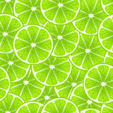 Green lime slices seamless background. Royalty Free Stock Images