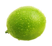 Green lime with water drops stock images