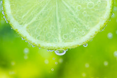 Green lime with water splash Stock Images