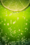 Green lime with water splash Royalty Free Stock Image