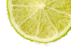 Green lime with water splash.  on white background Stock Photo