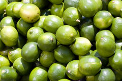 Green limes. Pile of green limes filling a frame Stock Photos