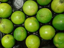 Green limes Stock Photos