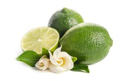 Green limes with half of juicy lime and beautifull flower. Isolated on white background royalty free stock photography