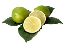 Green limes on leaves. Over white background Royalty Free Stock Photo
