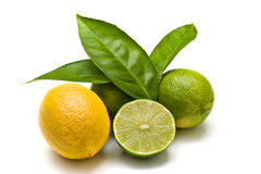 Green limes and lemon. Isolated on white royalty free stock photo