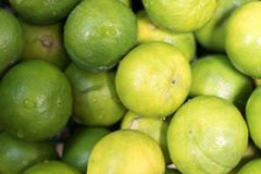 The green limes. Royalty Free Stock Photo