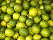 Green limes on the market Stock Photography