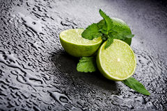 Green limes with mint and water drops Royalty Free Stock Image