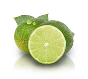 Green Limes on White Background Stock Images