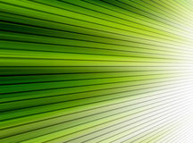 Green lines. Ray of light with . abstract illustration stock illustration