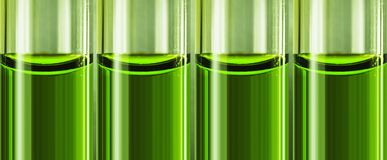 Green liquid chemical weapon in glass tubes. Royalty Free Stock Photo