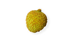 A green litchi chinensis isolated on white background Stock Images
