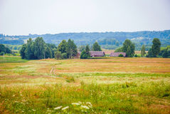 Green Lithuanian countryside in sunny day Royalty Free Stock Images