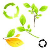 Green Living Elements Royalty Free Stock Photo