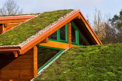 Green living roof on wooden building covered with vegetation. Green ecological sod roof on wooden building covered with vegetation mostly sedum sexangulare, also Stock Image